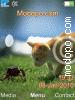 Download cat3 W715 Tema