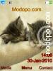 Download so cute W715 Tema